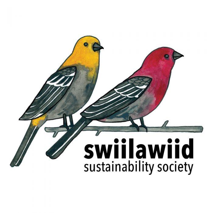 Swiilawiid Identity